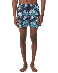 Vilebrequin Starlettes & Turtles Trunks - Blue