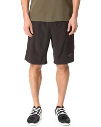 Halo - Endurance Shorts - Lyst