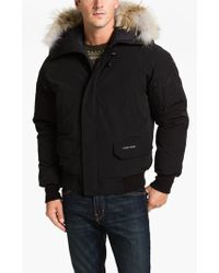 Canada Goose' polar bears international expedition down parka - women's