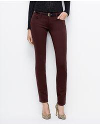 Ann Taylor Knit Slim Pants - Lyst