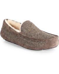 Ugg Ascot Tweed Slippers - Lyst