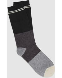 Eileen Fisher - Fine Cotton Stripe And Colorblock Sock - Lyst