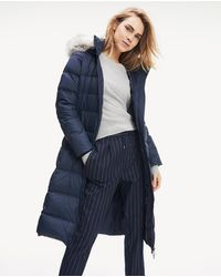 Tommy Hilfiger Navy Blue Quilted Coat With A Hood