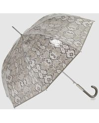 Ezpeleta Paraguas Transparente Automático Con Estampado Serpiente En Gris