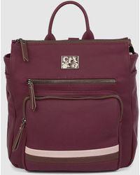 Caminatta Burgundy Backpack With Zip - Purple