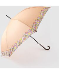 Caminatta Long Orange Umbrella With Printed Detail - Multicolor