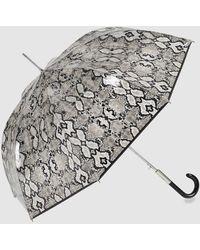 Ezpeleta Paraguas Transparente Automático Con Estampado Serpiente En Negro