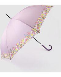 Caminatta Long Mauve Umbrella With Printed Detail - Pink