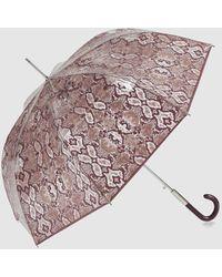 Ezpeleta Paraguas Transparente Automático Con Estampado Serpiente En Burdeos - Multicolor
