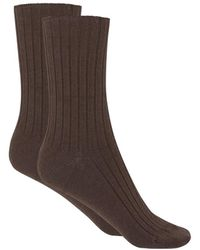 Punto Blanco Brown Bamboo Socks