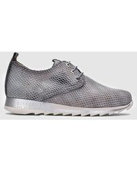 Hispanitas Metallic Gray Sneakers
