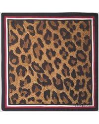Tommy Hilfiger Brown Animal Print Silk Bandanna