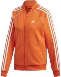 db955b43 Sst Sweatshirt - Orange