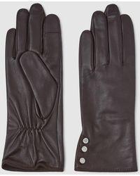 Lauren by Ralph Lauren Dark Brown Leather Gloves With Buttons - Multicolour