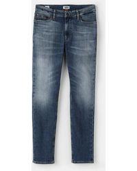 Tommy Hilfiger Mens Blue Skinny Jeans