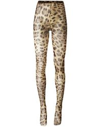 Dolce & Gabbana Leopard-printed Tights - Natural