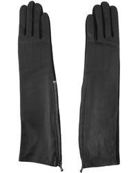 Lanvin Long Gloves - Black