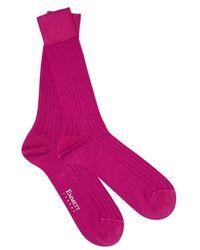 Emmett London Fuchsia Socks Mercerized Cotton - Pink