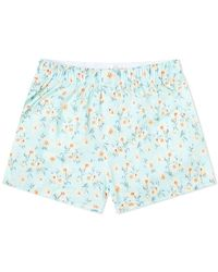 Druthers Daisy Boxer Short - Blue