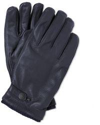 Hestra Elk Utsjö Glove - Blue