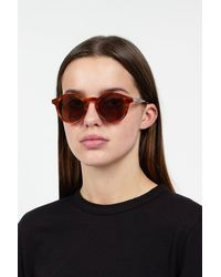 Sun Buddies Zinedine Brown Tortoise Sunglasses