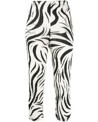 Pleats Please Issey Miyake Zebra-pattern Pleated Trousers - White