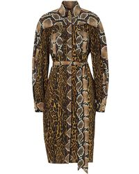 Burberry Costanza Animal-print Silk-crepe Shirt Dress - Brown
