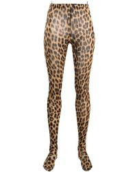 Sportmax Leopard-print High-rise leggings - Brown