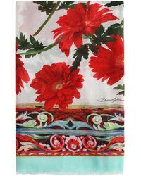 Dolce & Gabbana - Floral-print Scarf - Lyst