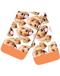 Etsy Dog Lover Animal Scarf Dachshund Winte - Multicolour