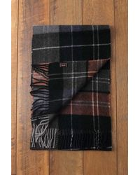 Etsy - Warm & Soft Quality Pure Wool Scotties Scarf Like Cashmere Great - Lyst