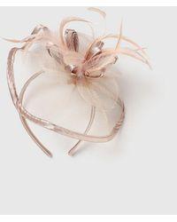 Evans Blush Satin Trim Fascinator - Pink