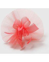 Evans Coral Crinkle Fascinator - Pink