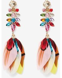 Express Multi-stone Feather Drop Earrings - Multicolour