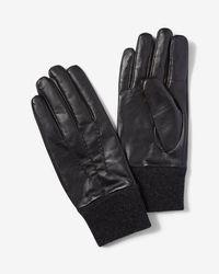 Express Genuine Leather Gloves - Black