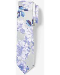 Express Narrow Floral Tie - Blue