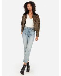 Express Leopard Print Sherpa-lined Denim Shortie Jacket Black