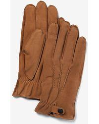 Express Genuine Nubuck Leather Gloves Neutral S/m - Brown