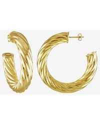 Express Machete Gold Twist Hoop Earrings Gold - Metallic