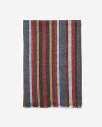 Express - Multicolor Stripe Woven Scarf - Lyst