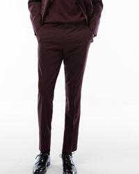 Express Slim Burgundy Wool Blend Oxford Suit Pants Red W29 L34