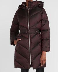 Express Long Belted Puffer Coat Merlot - Brown