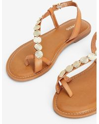 Express Toe Loop Coin Sandals Brown 9