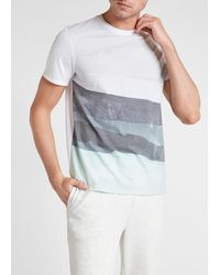 Express White Lithosphere Graphic T-shirt White M Tall