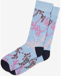 Express Fern Floral Print Dress Socks Blue