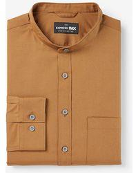 Express Slim Solid Stretch Cotton 1mx Dress Shirt Brown M Tall