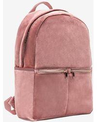 Express Mytagalongs Velour Backpack Rose Pink