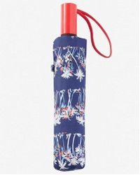 Express Palm Tree Print Umbrella