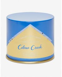 Express Illume Citrus Crush Vanity Tin Candle Assorted - Blue