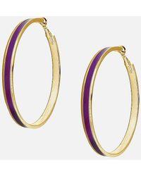 Express Tuleste Large Gold Enamel Channel Hoop Earrings Purple Onesize